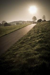 Morgenstimmung am Vogelsberg XV von Thomas Schaefer