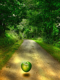 Apple Lane by David Drummond