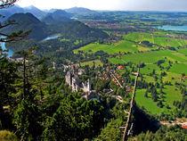 Bavaria Landscape and Neuschwannstein Castle by Pedro Liborio