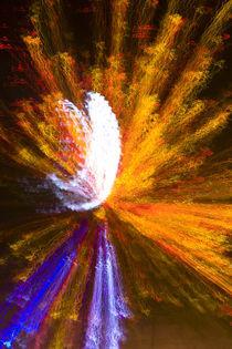starburst-8825v1 von Dennis Tarnay Jr