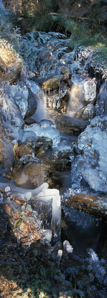 Erster Frost am Wildbach 5 by Intensivelight Panorama-Edition