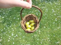 easter egg hunt von Camilla Bell