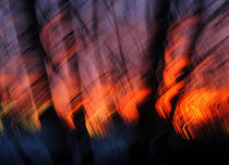 Light Up Your Skies von Kitsmumma Fine Art Photography