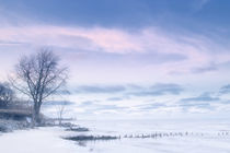 Winter Blues by Richard Susanto