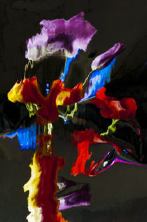 Colorful Distortion 145  by Thom Gourley