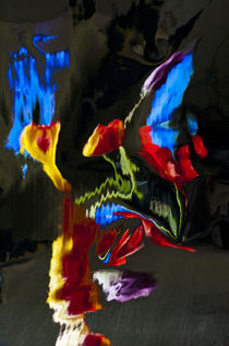 Colorful Distortion 150  by Thom Gourley