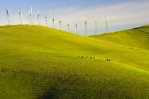 Rolling Hills and Wind Mills von Richard Susanto