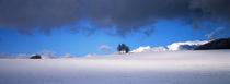 Blau-weisse Winterlandschaft by Intensivelight Panorama-Edition