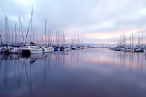 Manly Boat Harbour von Kelly Pack