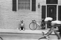 Bicycle Race von © Joe  Beasley