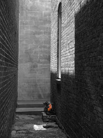 Sandra's Alley by © Joe  Beasley