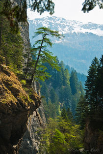 In den Alpen by Chris Rüfli Photography