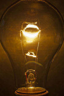 Light Bulb 284 by Thom Gourley