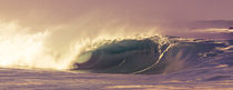 Big Surf in Hawaii by Peter  Crumpton