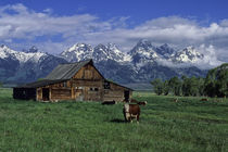 Grand Teton Mountains and Barn by Wolfgang Kaehler