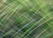 Impressionist Wild Grass von Kitsmumma Fine Art Photography