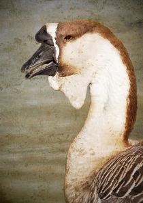 Strange Goose #1 by Eye in Hand Gallery