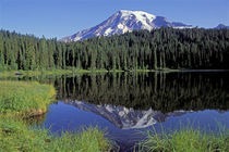 Mount Rainier, Reflections by Wolfgang Kaehler