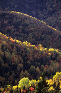 Fall Colors in Quebec by Wolfgang Kaehler