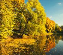 The Season Of The Fall