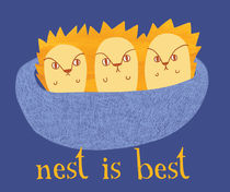 Nest is Best by Maeg Yosef
