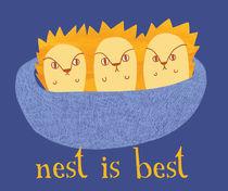 Nest-jpg