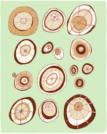 Tree Rings by Maeg Yosef