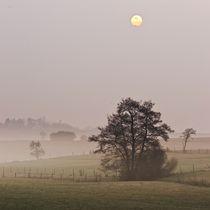 Misty Sunrise von Maciej Markiewicz