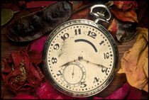 Pocket Watch by Peter Calvin