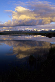 Denali National Park, Wonder Lake by Wolfgang Kaehler