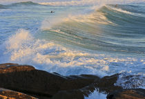 Swell, Manly Beach von Cameron Booth