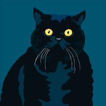 Fat Cat by sebastiano ranchetti