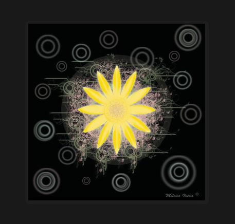 Magic-flower