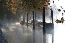 Rheinlandschaft an einem Oktobermorgen von Bea  Gaberthüel