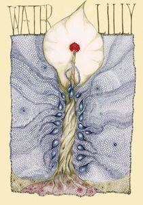Aqua Lillium von Helena Wilsen - Saunders