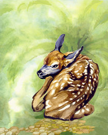 Fawn Parked in the Fern by Patricia Howitt