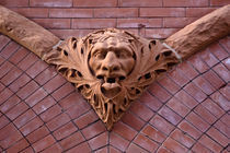 Gothic Face_3769 by Dennis Tarnay Jr