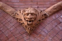 Gothic Face_3769 von Dennis Tarnay Jr