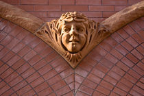 Gothic Face_3772 by Dennis Tarnay Jr