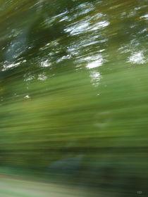 Green Rush von Anne Bollwahn