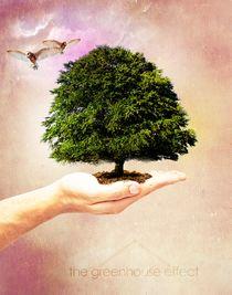The Greenhouse Effect von Margaryta Bushkin