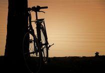 Sommer, Fahrrad im Abendlicht von Bea  Gaberthüel