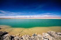 Cejar Lagoon by Ricardo Martinez