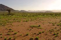 namibian landscape von james smit