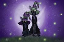 Magic-and-mischief