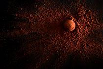 Truffles by Tomer Burmad