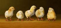 Five Chicks Named Moe