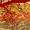 Autumn-art