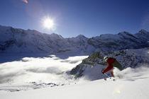 Rwi-ski2005078