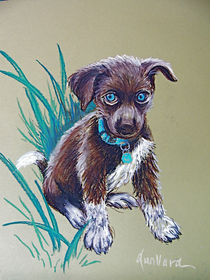 Cute Puppy with Blue Eyes by Deborah Willard
